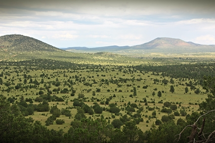 Kaibab National Forest Aerial Drone Mapping Project